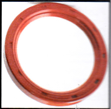 0098 / Super Rear Seal